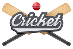 Cricket leather ball and wooden bats Stock Photos
