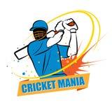 Cricket Mania Royalty Free Stock Photo