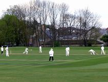Cricket match Stock Photography