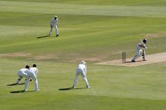 Cricket match Royalty Free Stock Images