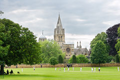 Cricket match royalty free stock photography