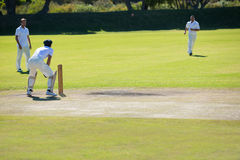 Cricket match at grassy field. On sunny day royalty free stock photography