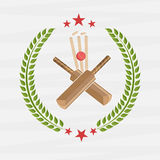 Cricket match objects. Stock Photography