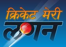 Cricket min förälskelse Royaltyfri Bild