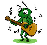 Cricket music guitar. Grasshopper playing a music guitar Royalty Free Stock Photos