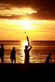 cricket na plaży Fotografia Royalty Free