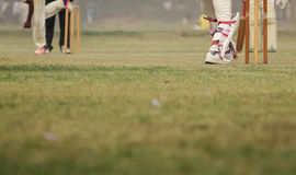 Cricket net practice Royalty Free Stock Photography