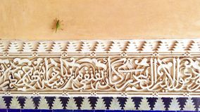 Cricket over ancient arabic stucco tiles. Green cricket on the wall close to arabic white and blue stucco Stock Image