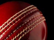 cricket piłkę Zdjęcia Royalty Free