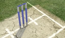 Cricket Pitch Ball And Wickets vector illustration