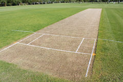 Cricket pitch empty Royalty Free Stock Images
