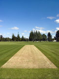 Cricket pitch in the park Royalty Free Stock Image