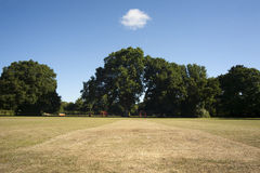 Cricket Pitch in park Stock Photo