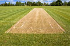 Free Cricket Pitch Sport Grass Field Empty Background Royalty Free Stock Images - 146687259