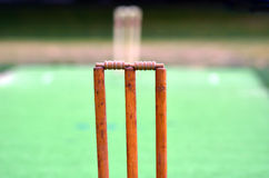 Cricket pitch. With wicket and stump Royalty Free Stock Photo