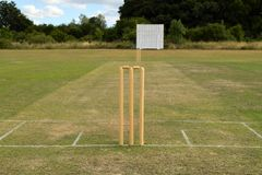 Cricket pitch with wicket and stumps royalty free stock photos
