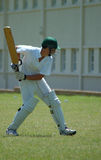 Cricket player Stock Photography