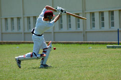 Free Cricket Player Stock Photography - 1426972