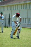 Cricket player Royalty Free Stock Images