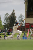 Cricket player Royalty Free Stock Image
