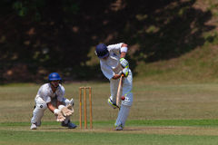 Cricket Player Bat Ball Keeper Royalty Free Stock Image