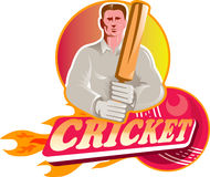 Cricket player batsman ball bat flames Stock Image