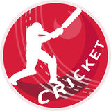 Cricket player batsman batting Stock Photography