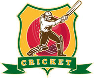 Cricket player batsman batting Stock Photo