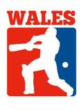Cricket player batsman batting retro Wales Stock Photos
