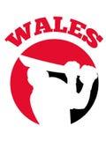 Cricket player batsman batting retro Wales Stock Images