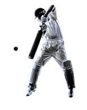 Cricket player  batsman silhouette Royalty Free Stock Photos