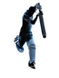 Cricket player  batsman silhouette Stock Photos
