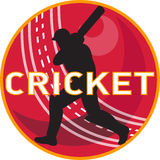 Cricket player batsman sports ball Stock Photography