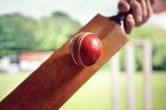 Cricket player hitting ball Royalty Free Stock Image