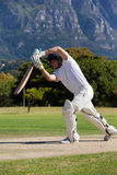 Cricket player playing on field during sunny day. Cricket player playing on field against mountain during sunny day royalty free stock photo