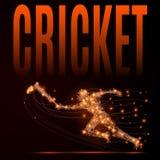 Cricket player poly stock illustration