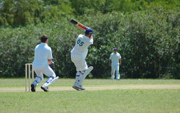 Cricket players Stock Photography