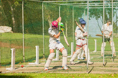 Cricket Players Batting Practice Nets Stock Photography