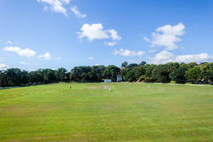 Cricket Players Sport Field Royalty Free Stock Photography