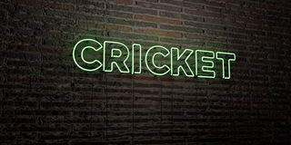 CRICKET -Realistic Neon Sign on Brick Wall background - 3D rendered royalty free stock image Stock Photography