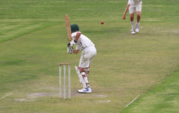 Cricket school boy is attacking the ball Stock Images