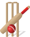 Cricket set Royalty Free Stock Images