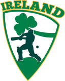 Cricket shamrock shield Ireland Royalty Free Stock Photos