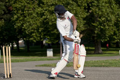 Cricket sport Stock Photos