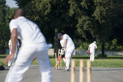 Cricket sport Stock Photo