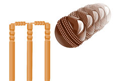 Cricket sport Royalty Free Stock Photo