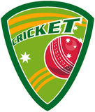 Cricket sport ball shield Royalty Free Stock Photography