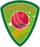 Cricket sport ball shield Royalty Free Stock Images