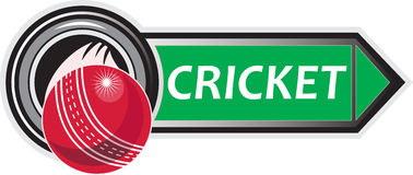 Cricket sports ball Stock Image