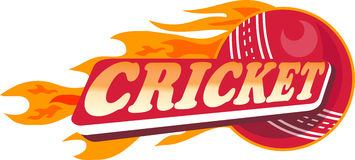 Cricket sports ball flames. Illustration of a cricket sports ball with fire and flames on isolated white  background done in retro style Stock Image